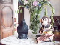 Crow and monkey